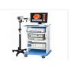 数码电子阴道镜/宫腔镜一体机(LJ-6000型)