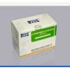 抗人绒毛膜促性腺激素(HCG)抗体检测试剂盒(酶联免疫法)