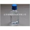 DEPC处理水(无DNase无RNase水)