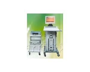 多功能前列腺治疗仪 TRM-2DA