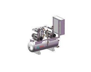 油润旋片式真空系统(双泵)