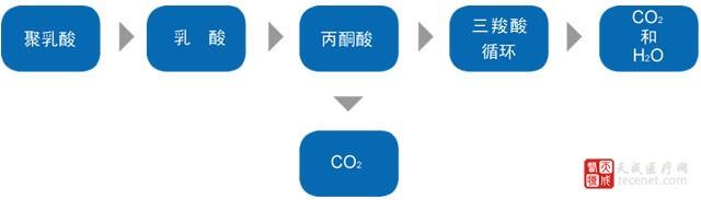 聚乳酸降解过程示意图