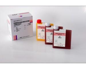 视黄醇结合蛋白测定试剂盒(免疫比浊法)