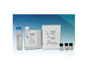 世珍好克 HCY同型半胱氨酸试剂盒