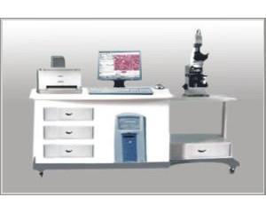 供应彩色病理图像分析系统