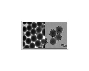 磁性纳米粒子系列产品