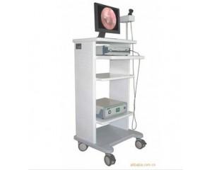 RT-600内窥镜摄像系统,内窥镜显像系统