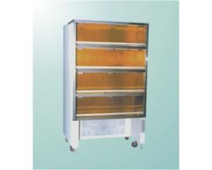 AML-1000型净化保管柜