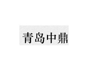 青岛中鼎科技有限公司