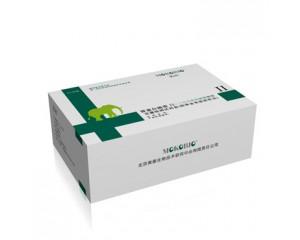 胃蛋白酶原Ⅱ定量检测试剂盒(免疫层析法)