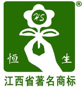 H江西恒生实业有限公司