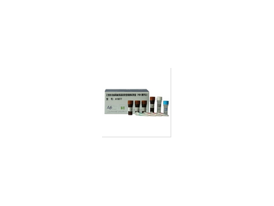 丙型肝炎病毒基因分型试剂盒(PCR-测序法)