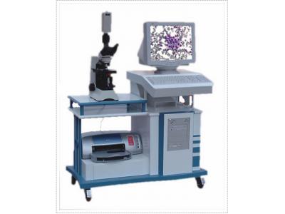 病理图像分析系统