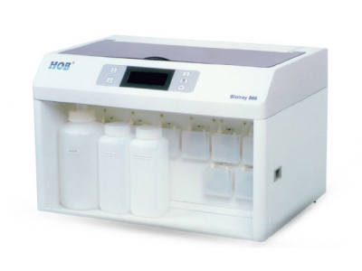 HOB自动蛋白印迹仪