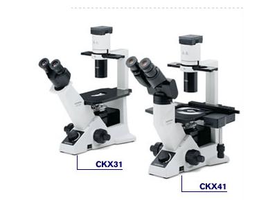 CKX31,CKX41系列临床级倒置显微镜