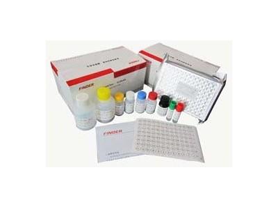 圆环病毒检测试剂盒