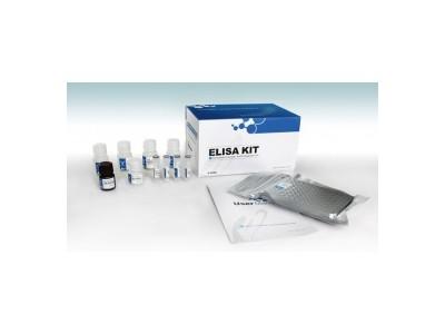 小鼠肿瘤坏死因子-a(TNF-a)检测试剂盒