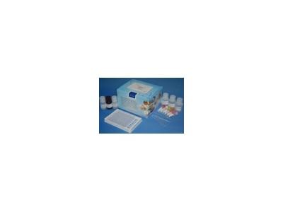 人铁蛋白(FE)检测试剂盒
