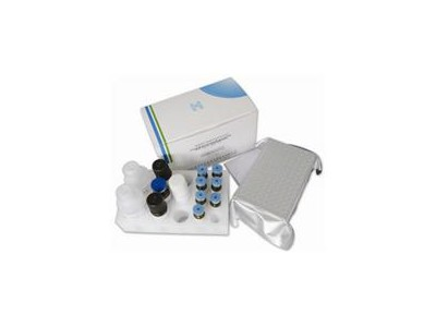 小鼠白介素12(IL-12/P40)Elisa试剂盒
