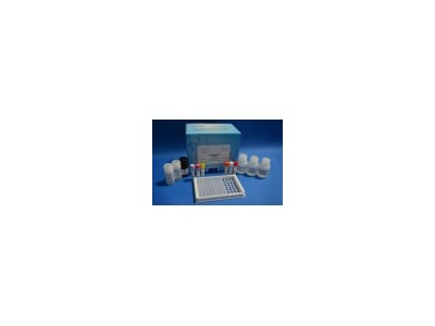 人白介素15(IL-15)检测试剂盒