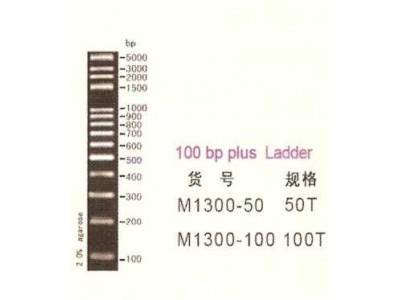 VC100bp Plus DNA Ladder, 50ug