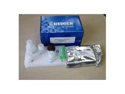 人甘丙肽/甘丙素(GAL)酶免elisa试剂盒