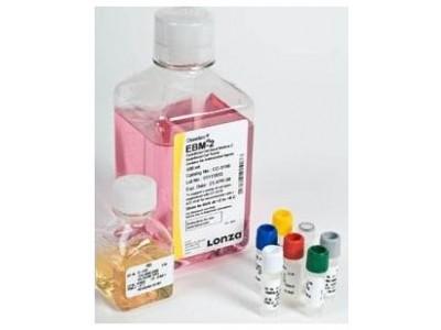 Lonza EGM2内皮细胞培养基