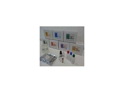 食品过敏源检测试剂盒