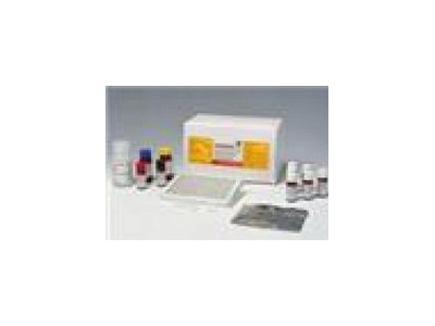维生素c/L-抗坏血酸