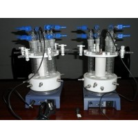 西安微型平行高压反应釜