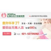 上海白玉兰公司