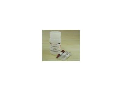 超氧化物检测试剂盒