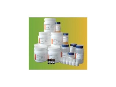 蛋白酶K,Proteinase K,sigmaP6556