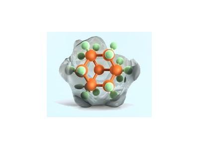 重组蛋白表达技术服务