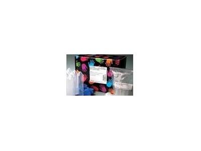 SBA单克隆抗体分型试剂盒