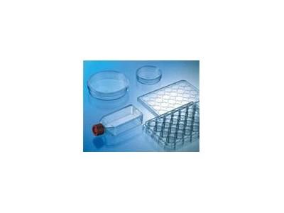Biocoat细胞培养系统