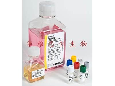 Lonza CC-3156 EGM-2-MV 内皮细胞培养基