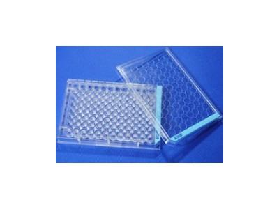 WHB赖氨酸包被培养皿|培养板|培养瓶