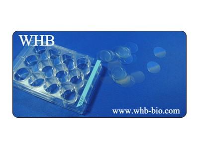 TC处理12孔板细胞爬片/圆形防脱盖玻片无菌