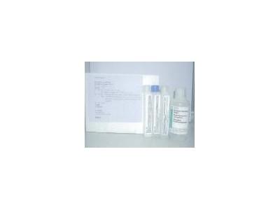 糖化血红蛋白测试盒