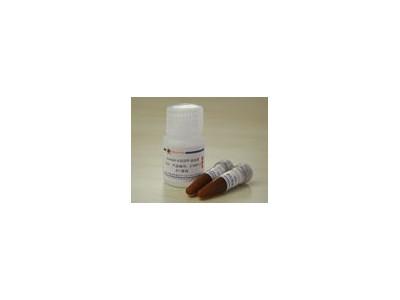 Annexin V-EGFP试剂盒