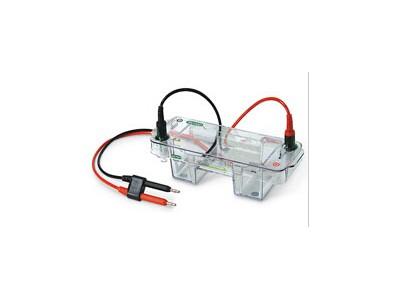 Mini-Sub cell GT 电泳槽