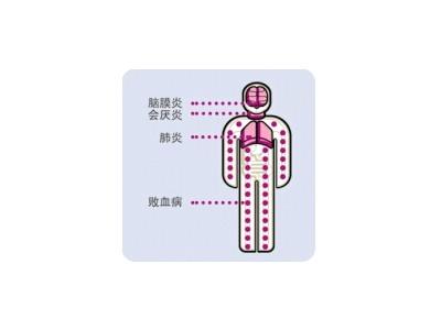 b型流感嗜血杆菌疫苗