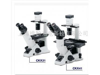 奥林巴斯显微镜CKX31/CKX41