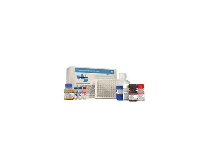 传染病-ELISA试剂盒