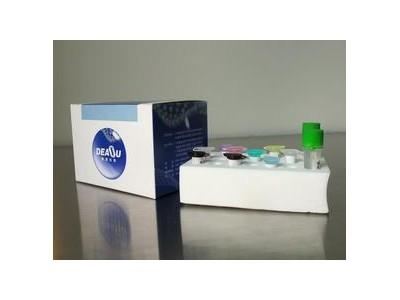 虾白斑病毒检测试剂盒