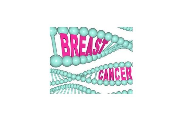 乳腺癌HIF-1α的表达研究