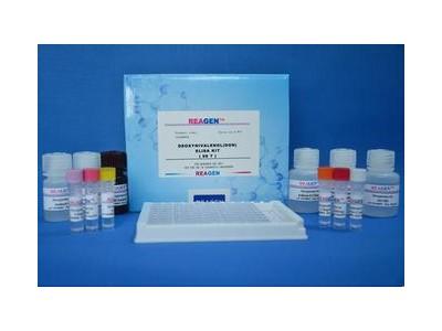 维生素 B12检测试剂盒