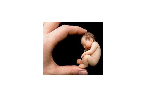 石家庄一医院计生科:未婚少女人流占总量的40%