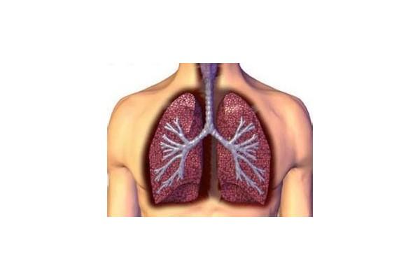五种人应定期检查肺功能
